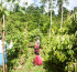 Lak Cinnamon Planters & Exporters